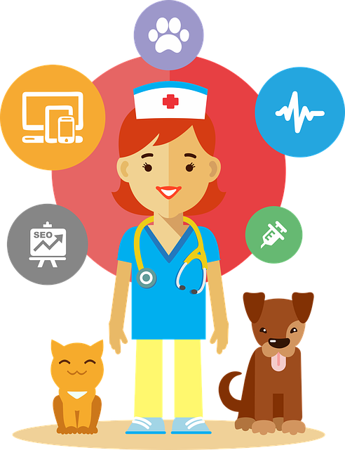 How to Select a Veterinarian