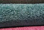 dog heat cycle staining carpet